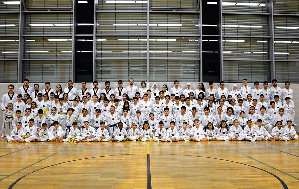 EFFECT Taekwondo