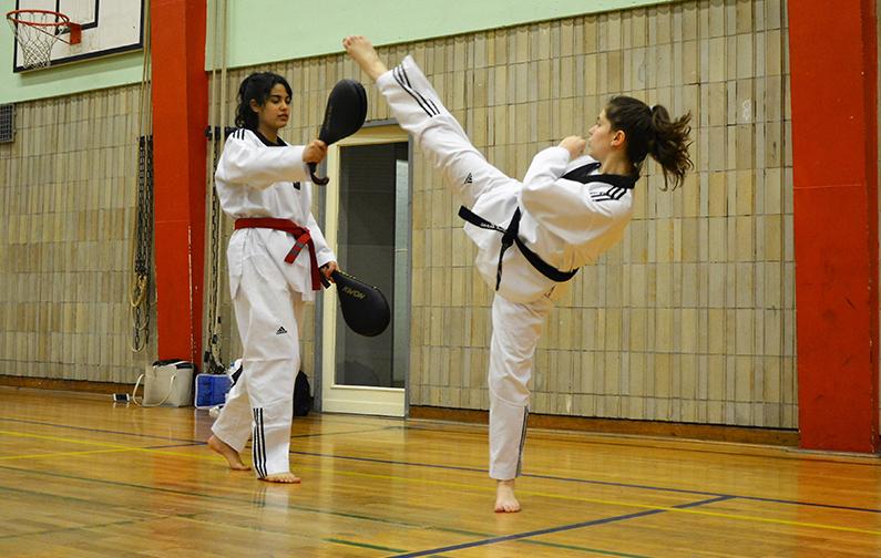EFFECT Girlz Taekwondo
