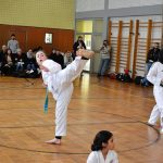 taekwondo-pruefung-kick-training-berlin-mitte-wedding-fitness