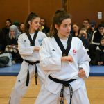 taekwondo, karate, judo, martialarts, mma, grapling, training, fitness, workout