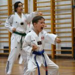 taekwondo karate judo kampfsport training berlin wedding mitte