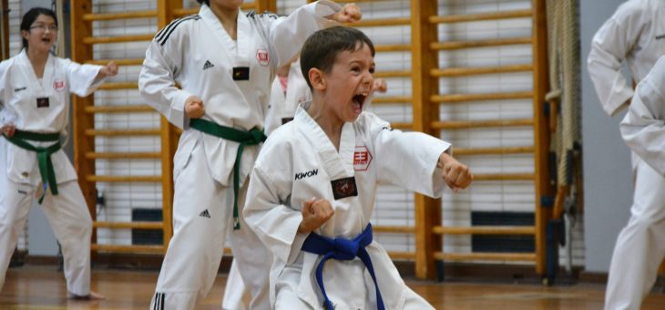 Taekwondo Gürtelprüfung – 16.06.2019